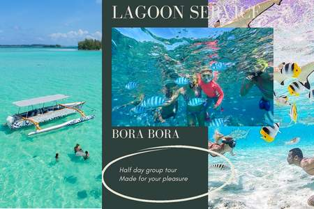 bora-bora-half-day-lagoon-activity-snorkeling-group